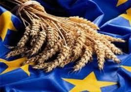 Avrupa Birliği-Türkiye Tarım Alanlarının Önemi